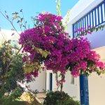 Photo de Hara Ilios Hotel