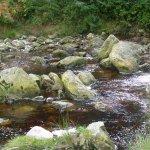 Photo of Powerscourt Waterfall