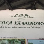 Photo de Lola ya Bonobo