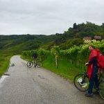 Pedal Power Bike and Segway Foto
