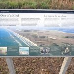 Photo of Padre Island National Seashore