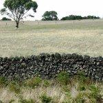 stoney rise fences