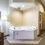 ภาพถ่ายของ Comfort Suites Berlin Hotel & Conference Center