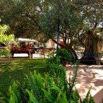 Photo of Hotel Toruno