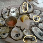the oysters where smashed trying to open them -very poor shucking