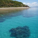 One of 100 different dive and snorkeling spots we get to check out on our trips