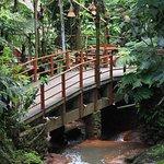 Bridge in Kampung Daun with its natural flowing small river