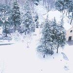 Forest Inn Showakan Foto