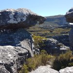 Day 2 on Table Mountain