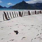 Day 3 Noordhoek Beach