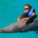 Photo de Dolphin Adventure by Vallarta Adventures