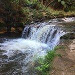Photo de Kerosene Creek