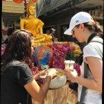 Absolute ChiangMai Photo