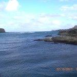 Views from Roarks across the Harbour to Raithlin Island