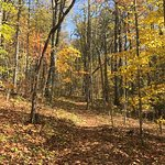 Crabtree Falls hike