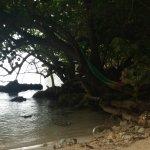 Photo de Half Moon Beach
