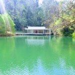 Um dos lagos do museu