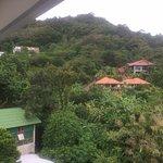Foto di Casa Del M, Patong Beach