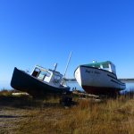 "Fishing boats ""For Sale"""