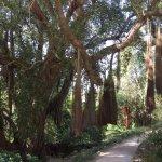 Photo of Parque de Monserrate