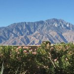 Photo de Miracle Springs Resort and Spa