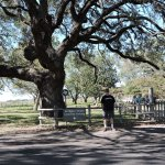 Foto de Lyndon B. Johnson State Park & Historic Site