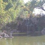 The beautiful pond!