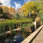 Foto de Sunrise Springs Spa Resort