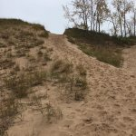 Dunes Hiking Trail의 사진