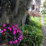 Los jardines alrededor de las habitaciones son preciosos y muy bien cuidados