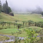 Green golf course in the rain.