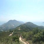 Foto Wild Hong Kong