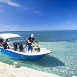 Las Rocas Resort & Dive Center Photo