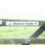 Keates Quarry Dinosaur Footprints