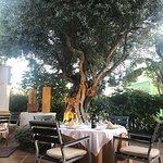 Photo of Restaurante Casa Fernando