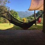 Hammock at the tequila tasting (look at the view!)