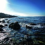 Bild från Maritimo Beach Hotel