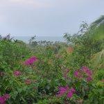 Veranda Natural Resort Foto