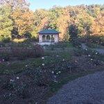 Foto de Vanderbilt Mansion National Historic Site