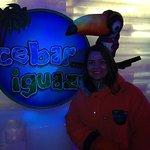 Photo of Icebar Iguazu
