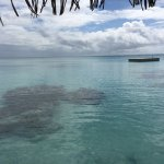 Photo de Pearl Havaiki