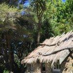 Sod cottage