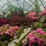 Photo de Serres Royales De Laeken