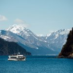 Arrive at Fox Island by a Kenai Fjords Tours vessel.
