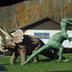 Dinosaurs stand guard to the road leading up to the Bike Barn
