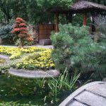 Photo of Shanghai Botanical Garden