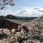 Cherry Blossoms and Enakyo Bridge