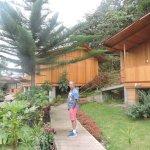 Los bungalows
