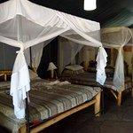 Foto Kibo Safari Camp