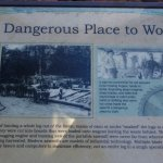 Lots of interpretive signs like this one